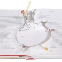 livres pour enfant de 2 ans le petit prince