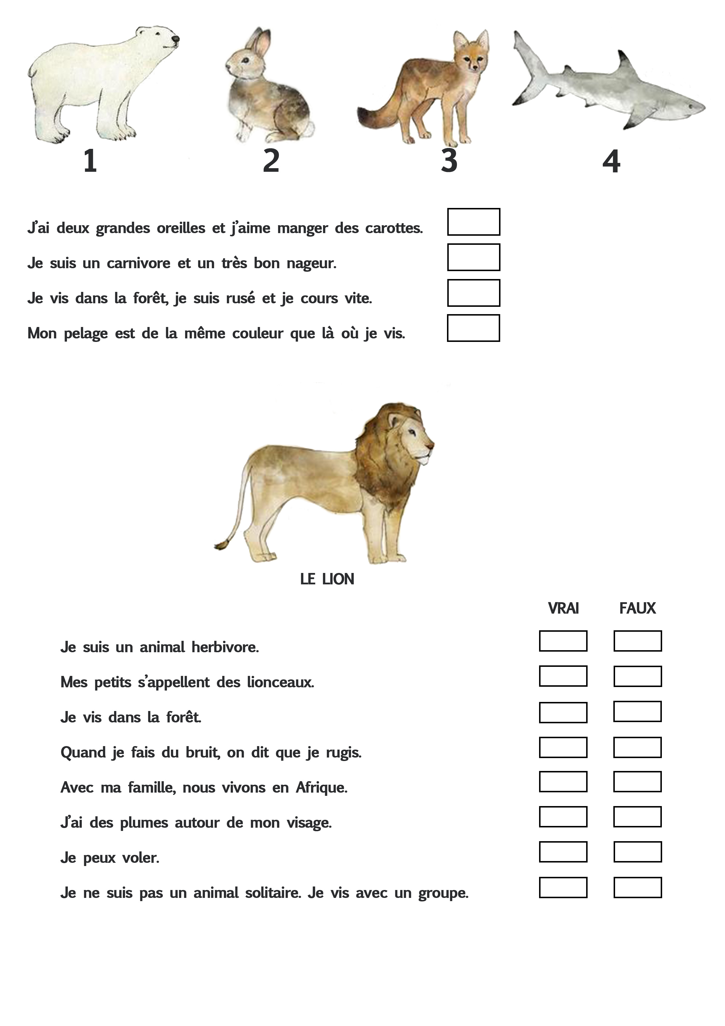 projet animaux ief
