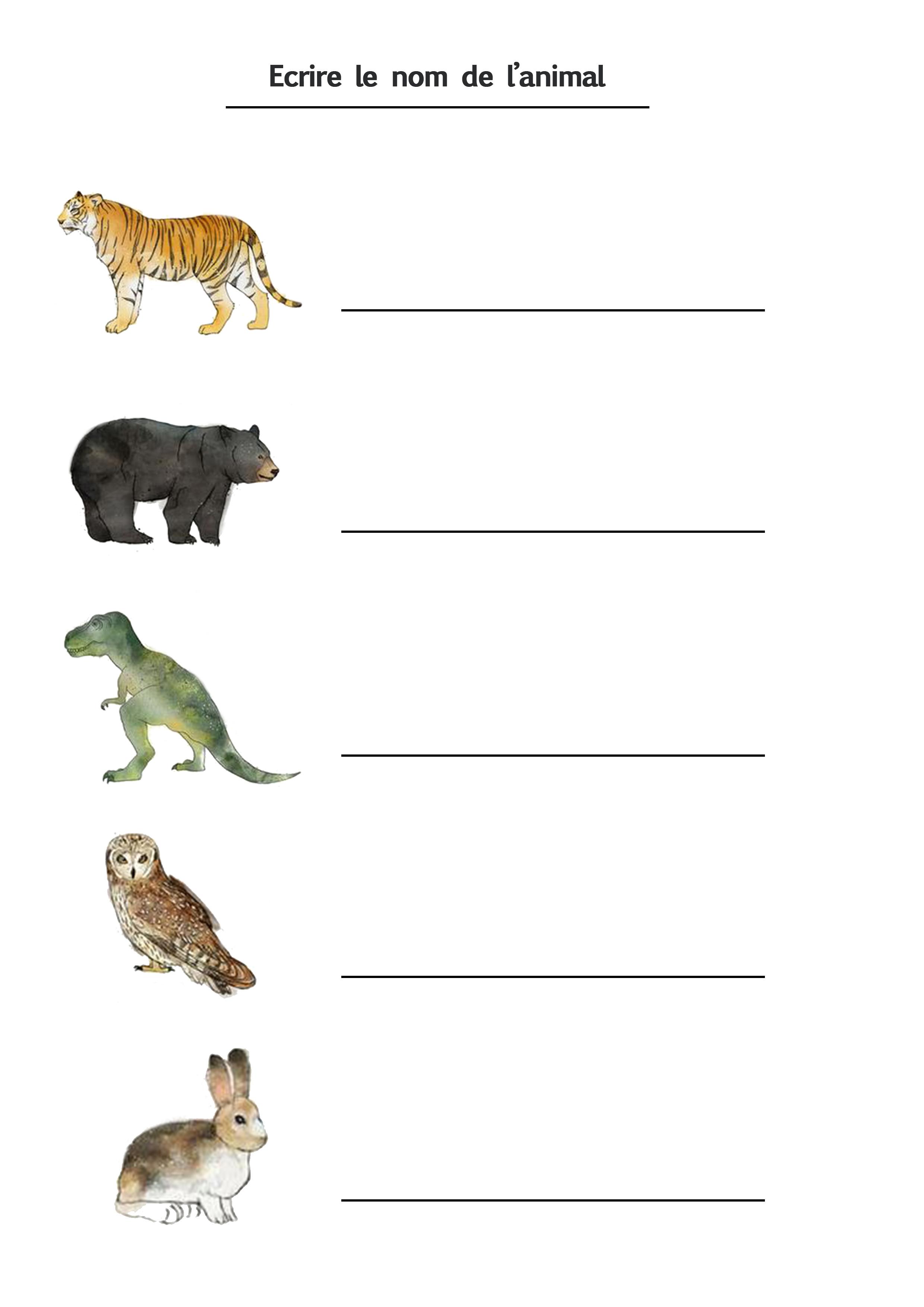 écriture projet animaux