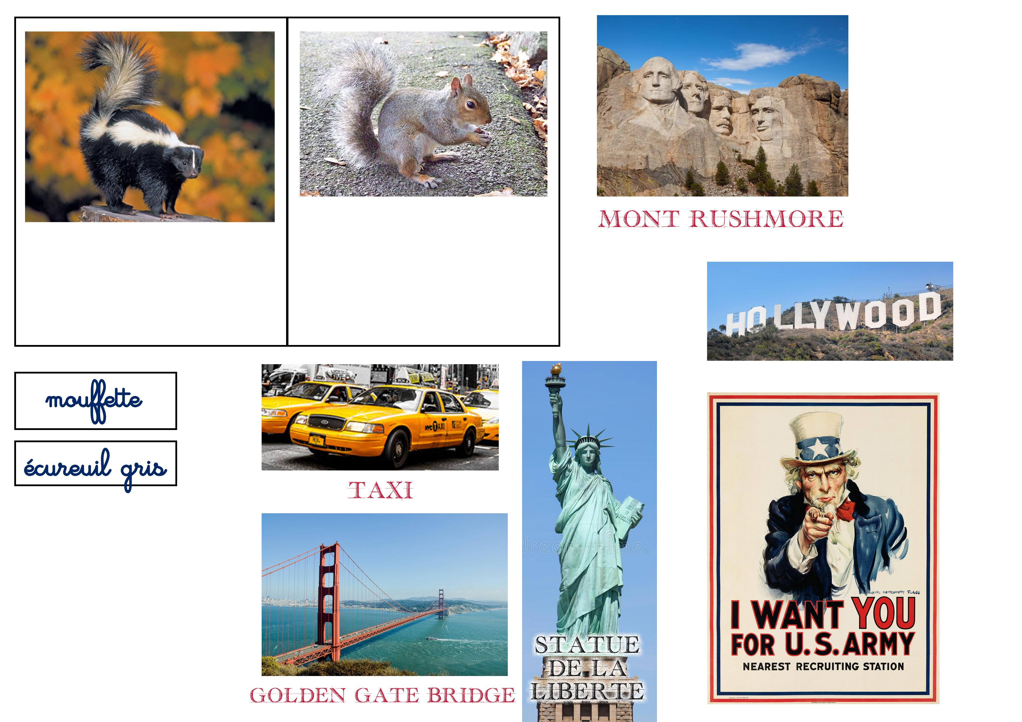 Lapbook USA ief animaux monuments nomenclature montessori