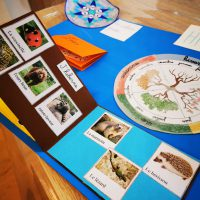 lapbook hiver instruction en famille