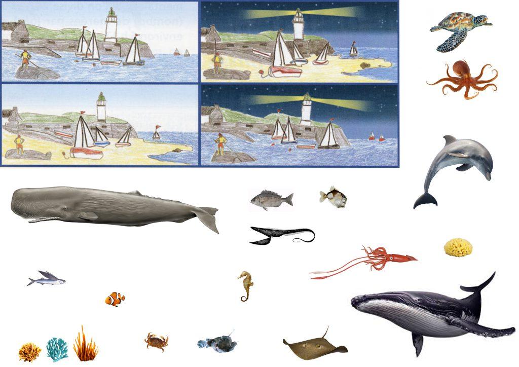 lapbook fichier océans