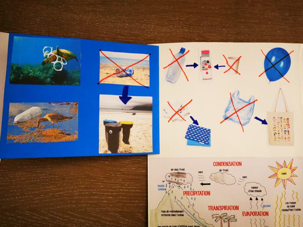 lapbook protection des océans