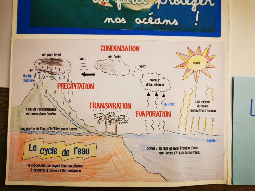 lapbook le cycle de l'eau projet