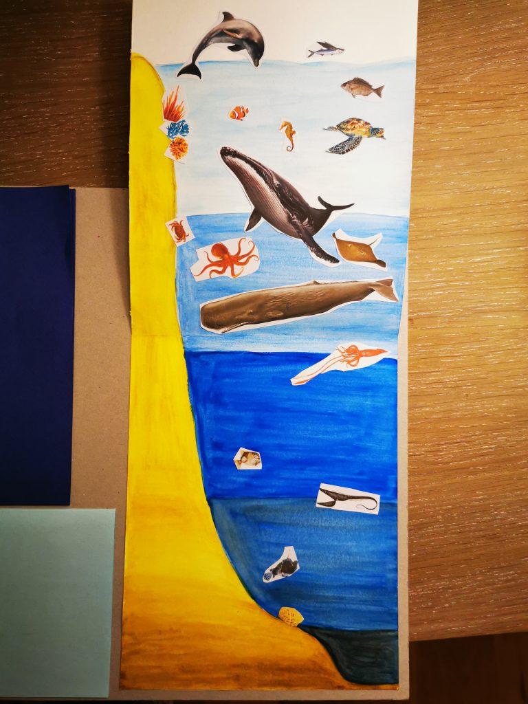 lapbook les océans et les animaux ief