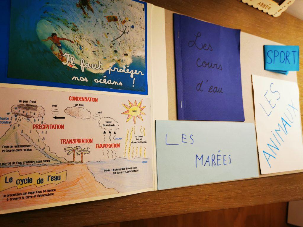 lapbook océans projet instruction en famille